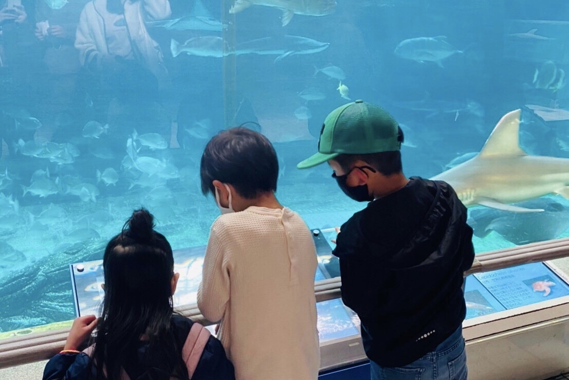 須磨水族館